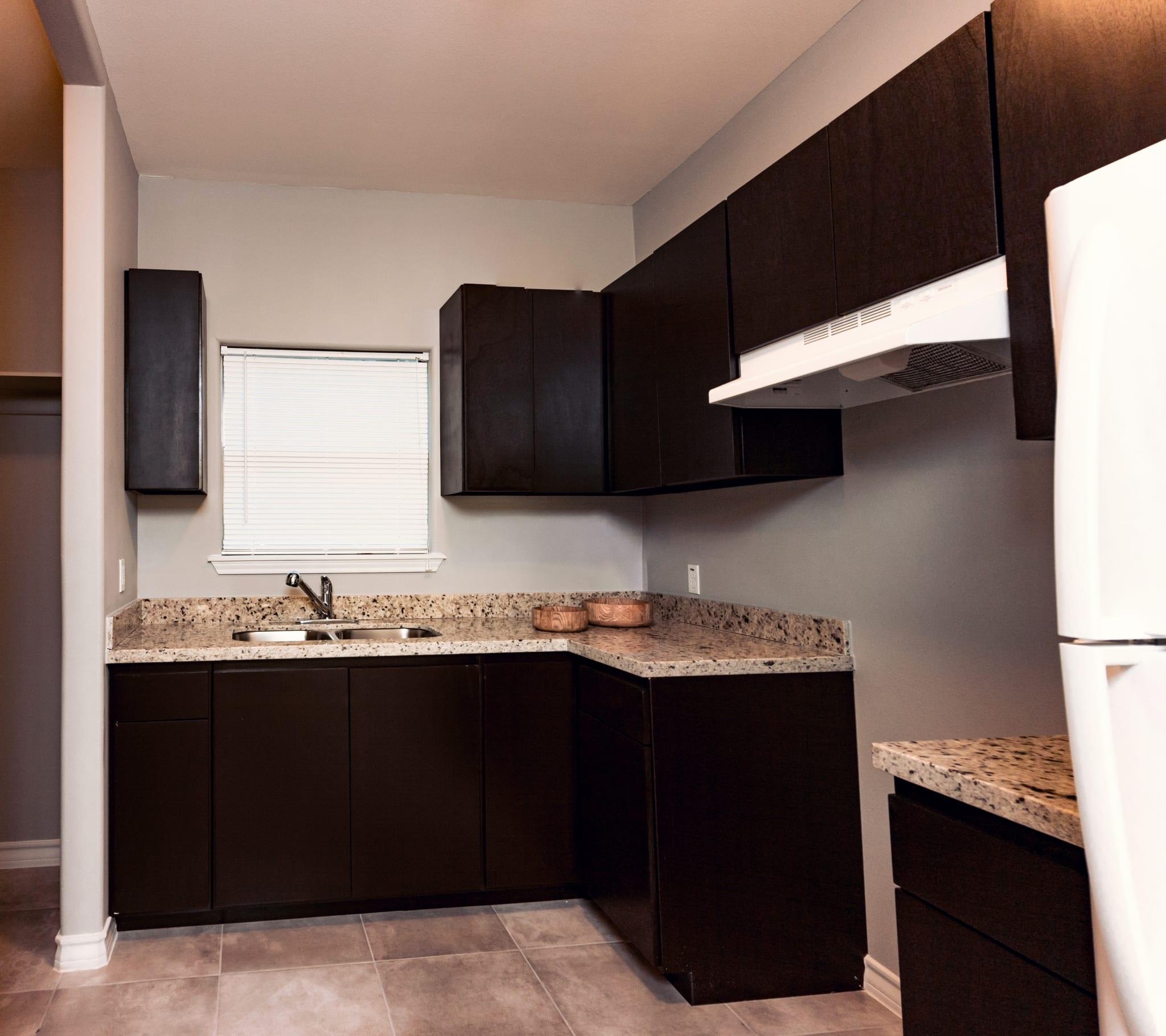 Riverhill Apartments: Laredo Horizons Development